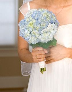 WeddingChannel Galleries: Blue Hydrangea Bouquet