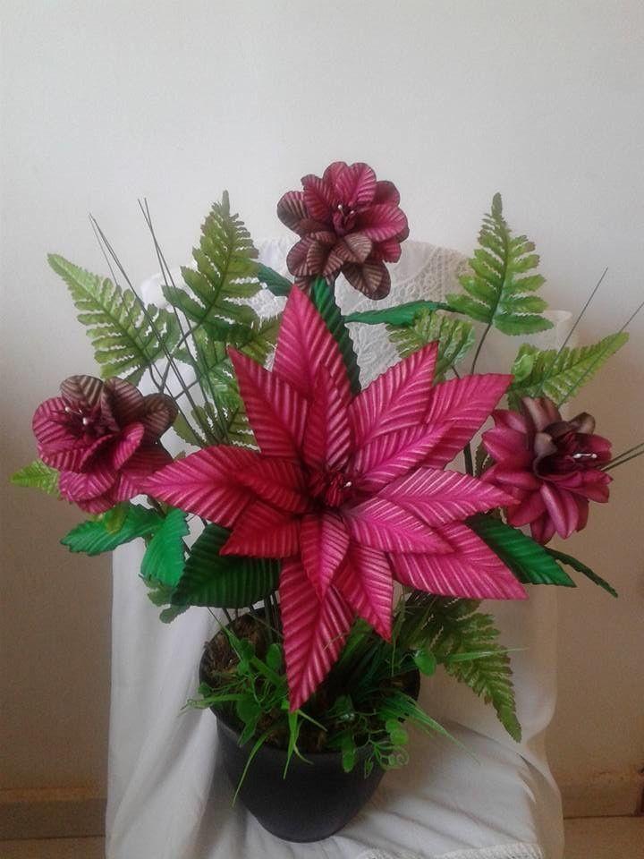 Resultado de imagem para lírio pipoca flor