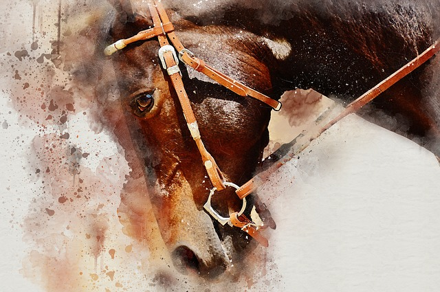 Ranny Kon We Snie Znaczenie Sennik Online Watercolor Horse Horses Brown Horse