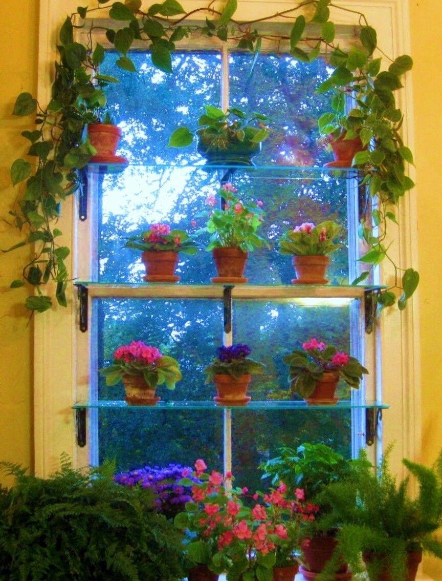 Idea for kitchen window