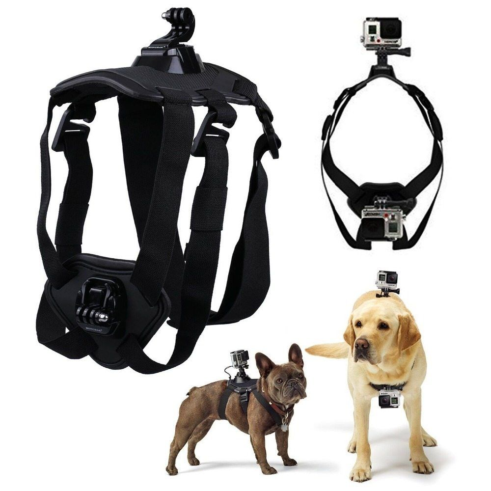 Neat Handle Sport Dog Harness Camera Wire Center Gopro Accessories Adjustable Dog Fetch Harness Chest Strap Belt Rhpinterest Com Dog Harness Vest Dog Harness bark post Escape Proof Dog Harness