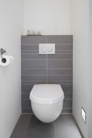 Wc Modern great height of shelf back wall contrasting with side walls