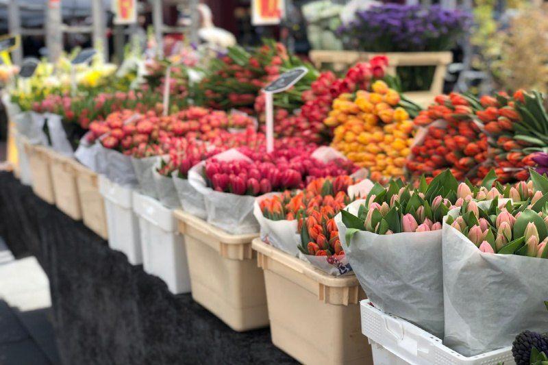 7 Memphis Flower Shops Nurseries Making Shopping Easy