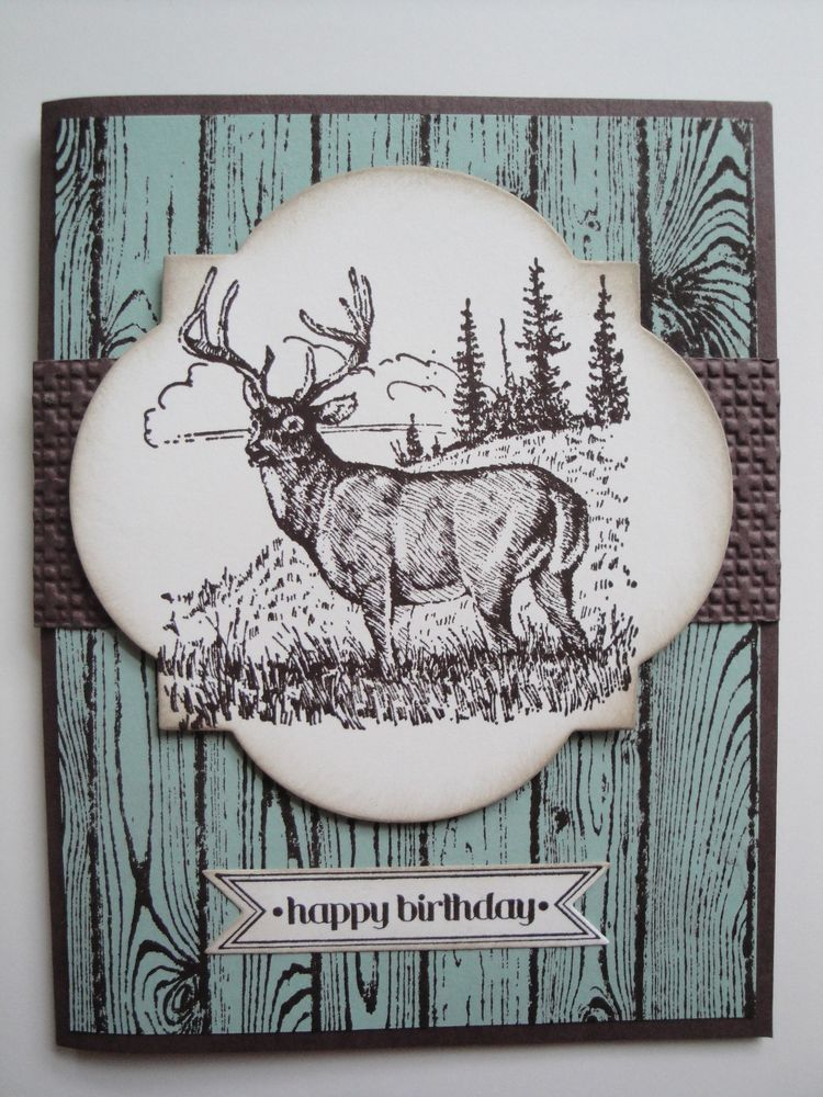 Deer birthday card kit 4 cards lot stampin up masculine men deer birthday card kit 4 cards lot stampin up masculine men hunting bookmarktalkfo Image collections