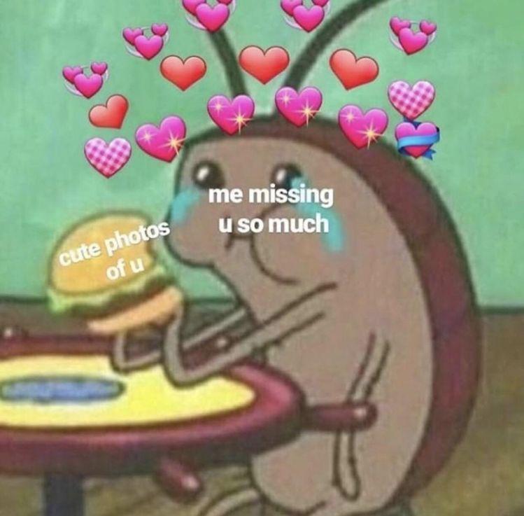 Pin By Beauty By Vivi On S O S Cute Love Memes Cute I Love You Love You Meme