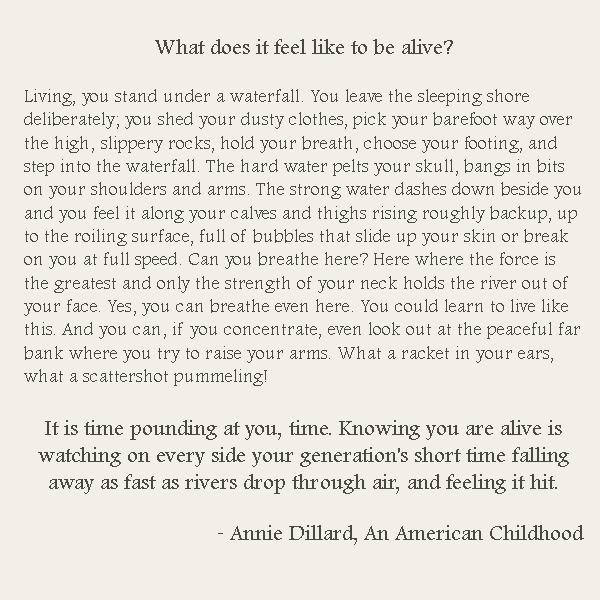 dillard an american childhood