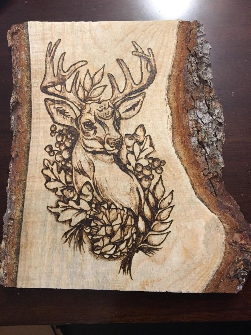 Woodburning Pyrography Ideas Beautiful Deer