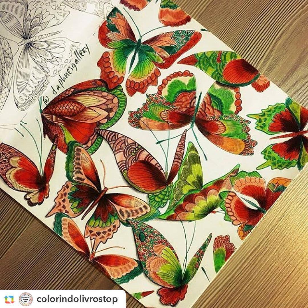 """""""#butterflies #butterfly #johannabasford #secretgarden #artwork #artterapy"""""""