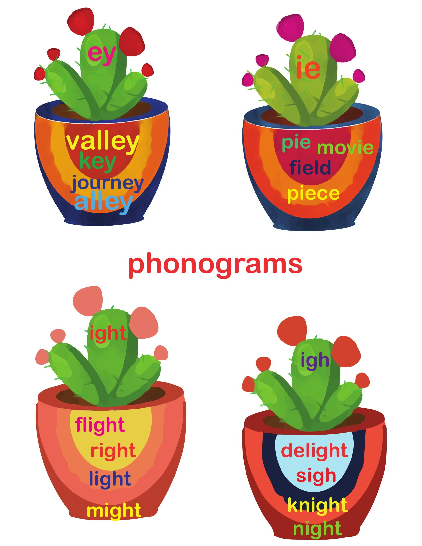 Phonograms Practice Sounds Ie Ey Igh Ight