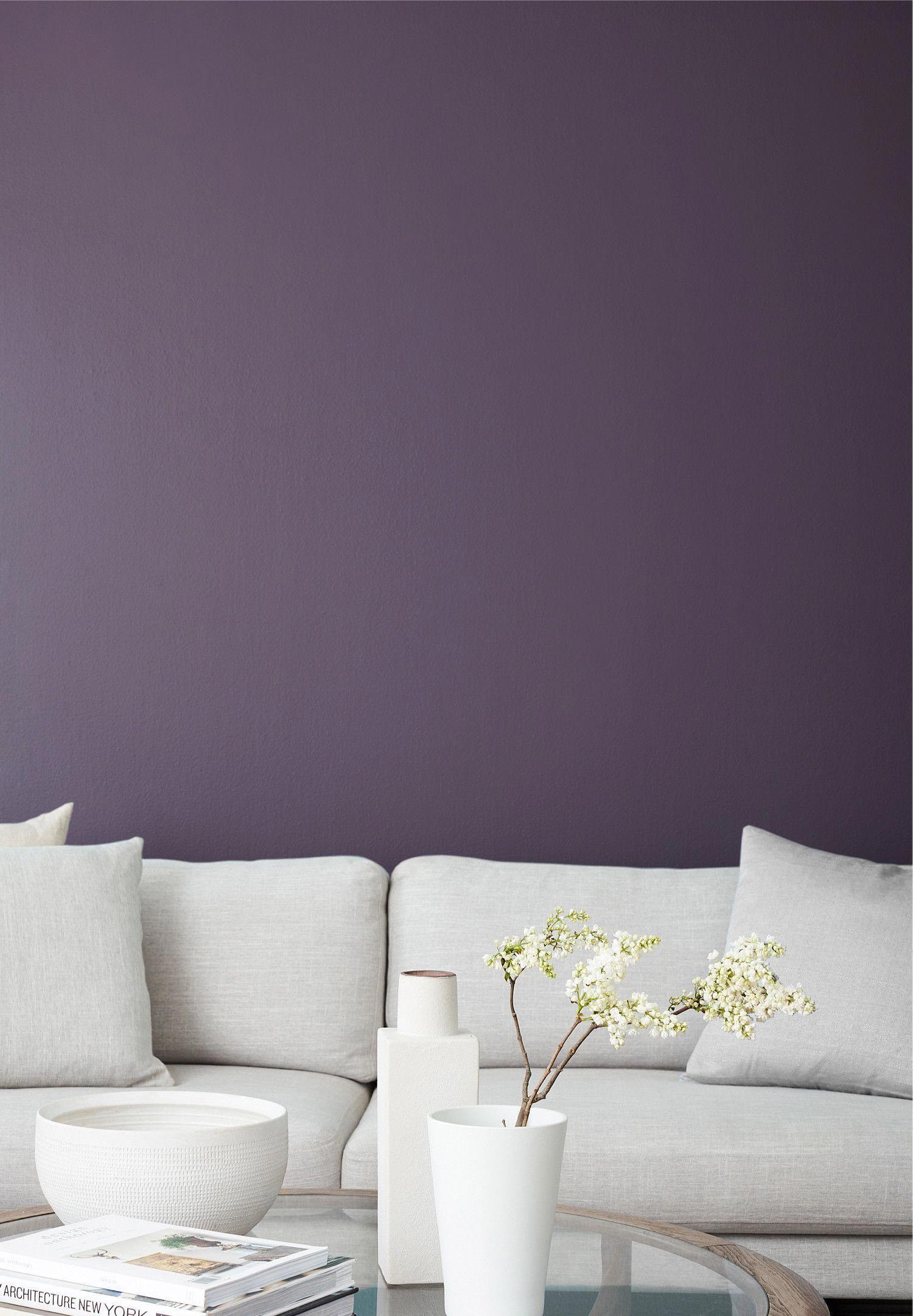Prince Dark Purple Trim Paint Color