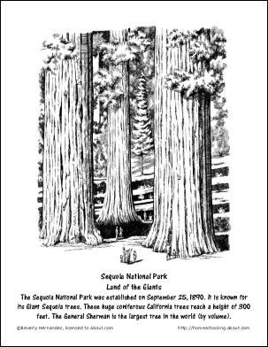 September Worksheets And Coloring Pages Sequoia National Park Page