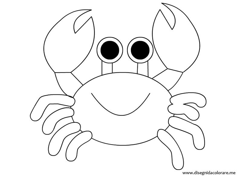 Image Result For Sea Creature Outline