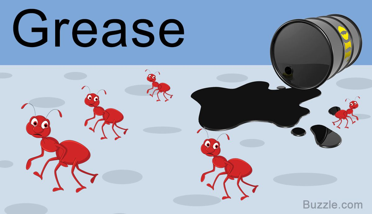14 Safe And Amazingly Simple Home Remedies To Get Rid Of Ants In 2020 With Images Rid Of Ants Get Rid Of Ants Ants