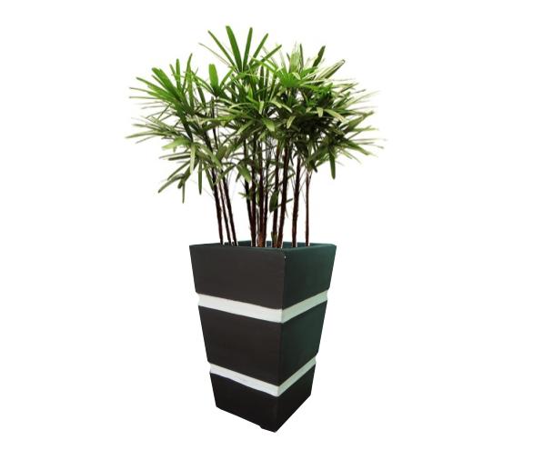 Vasos Com Plantas Png Pesquisa Google Vasos Pinterest