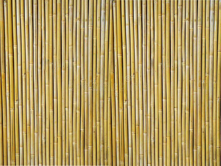 Strukturierter Bambushintergrund Digitales Hintergrundbild von Yellow Bamboo  Strukturierter Bambushintergrund Digitales Hintergrundbild von Yellow Bamboo