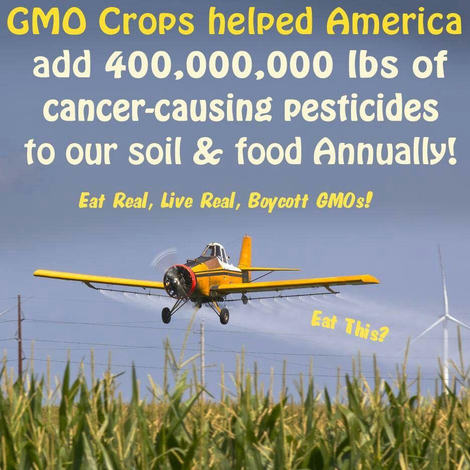 Don't buy GMO's