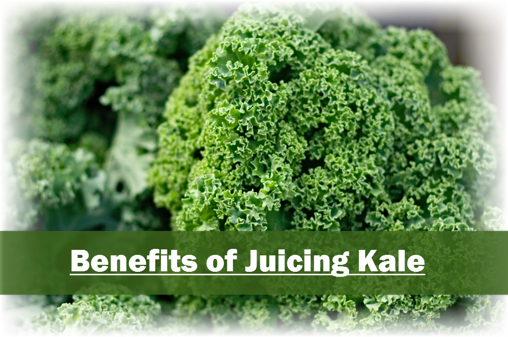 Benefits of drinking Kale Juice: Phytonutrients: help fight cervical