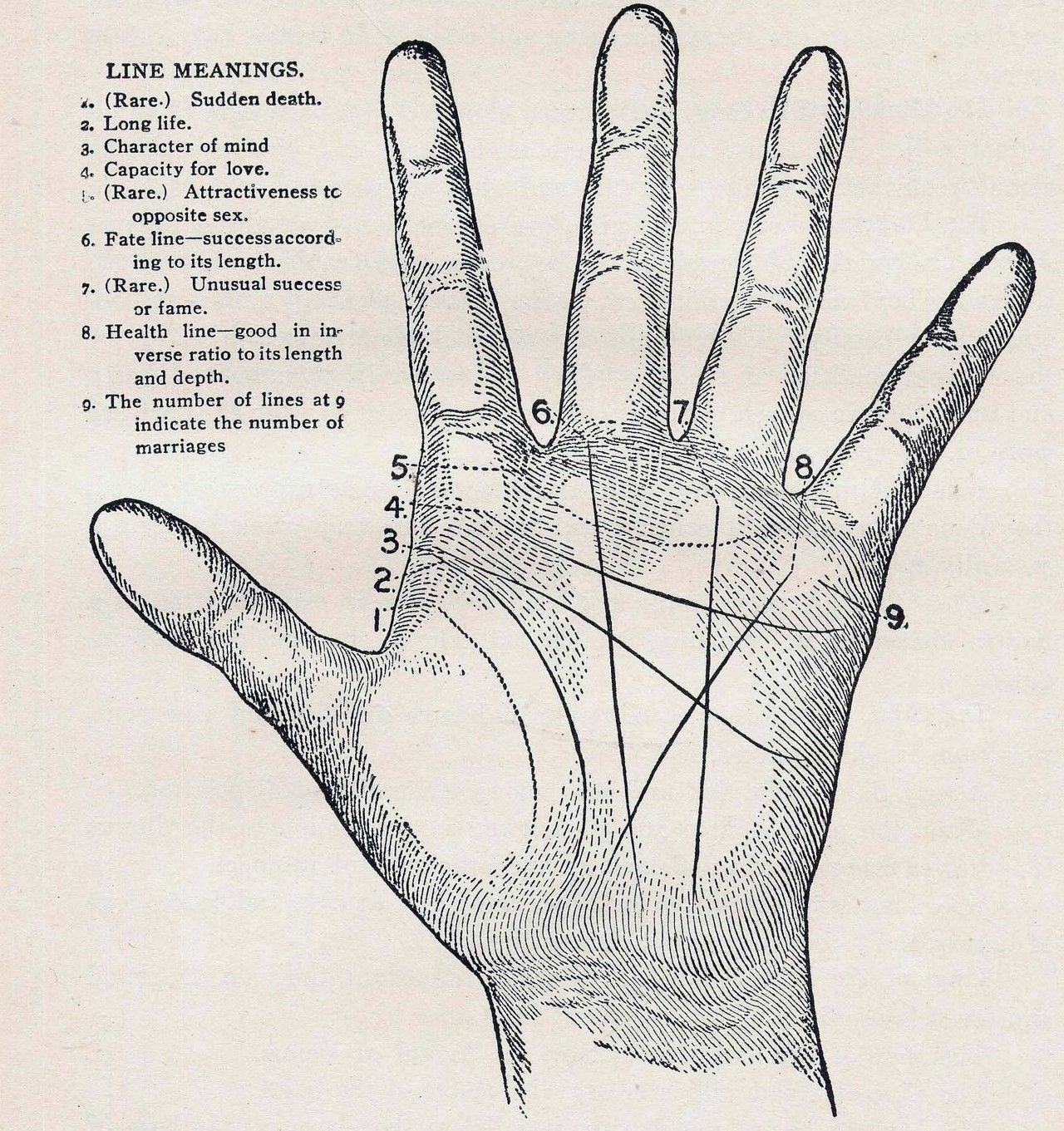 the literal worst photo palm reading magick wiccan witchcraft hand lines [ 1280 x 1361 Pixel ]
