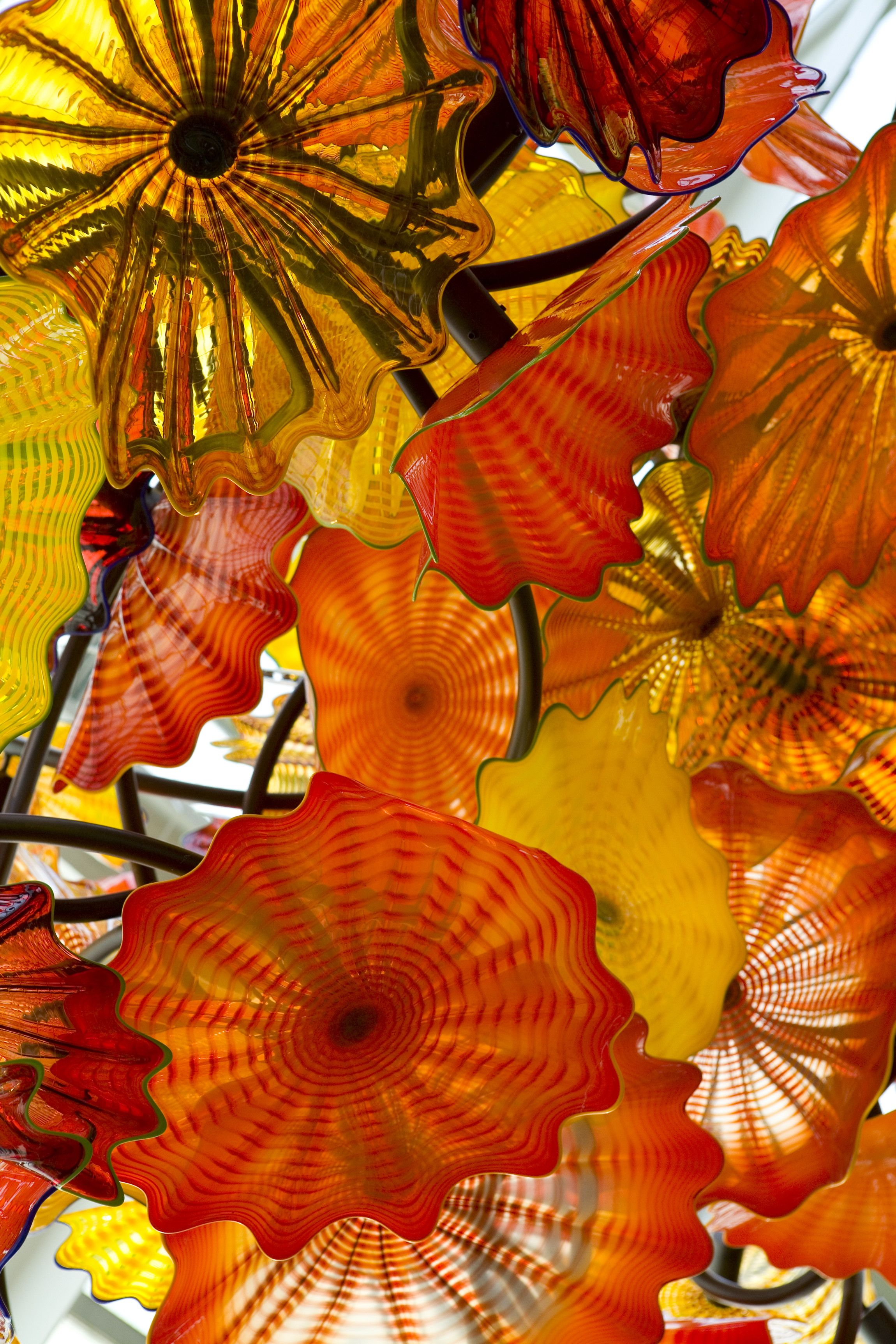 Chihuly Celebrating Nature Opens Today At Franklin Park Conservatory In Columbus Ohio Experience The Conservatory S Full C Chihuly Blown Glass Art Artwork