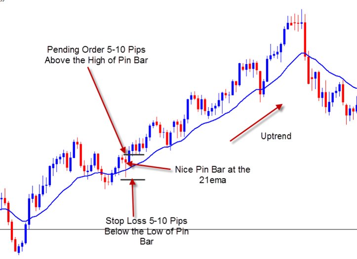 Pin Bar With Moving Average Forex Strategies Forex Resources Forex Trading Free Forex Trading Signals And Fx Forec Moving Average How To Get Rich Trading