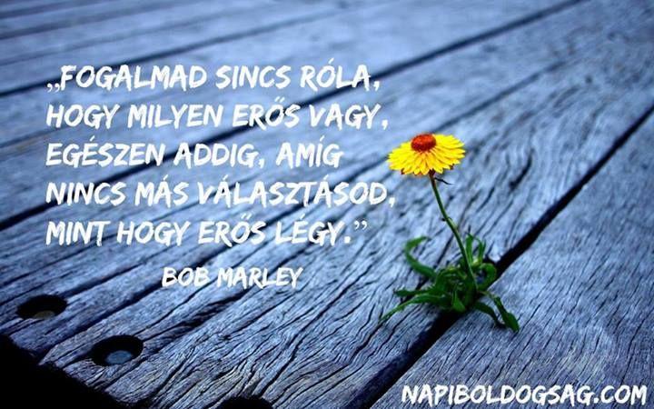Bob Marley idézete a bennünk rejlő erőről. A kép forrása: Napi Boldogság # Facebook