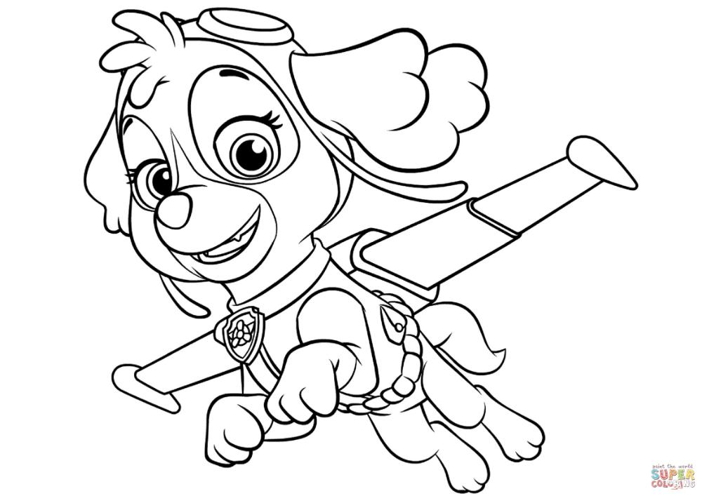 pinlilia revutska on Розмальовки  paw patrol coloring