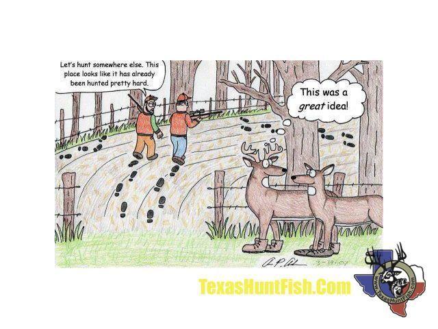 flukes and elk relationship memes
