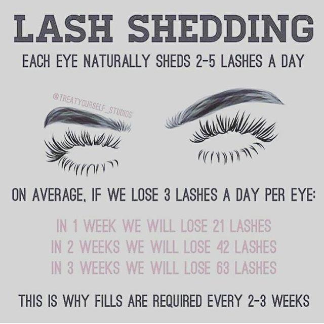 219 Likes 14 Comments Certified Lash Technician Lashedbyriri