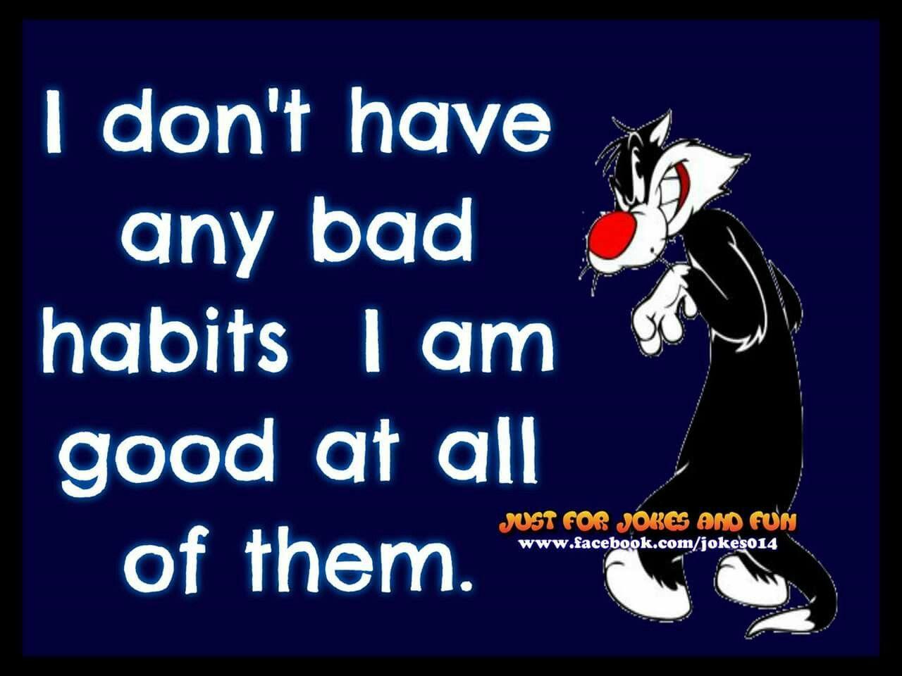 no bad habits good at all of them Sylvester cartoon joke