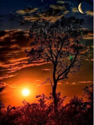 Buenos Dias Señor Sol Beautiful Nature Beautiful Landscapes Beautiful Sunrise