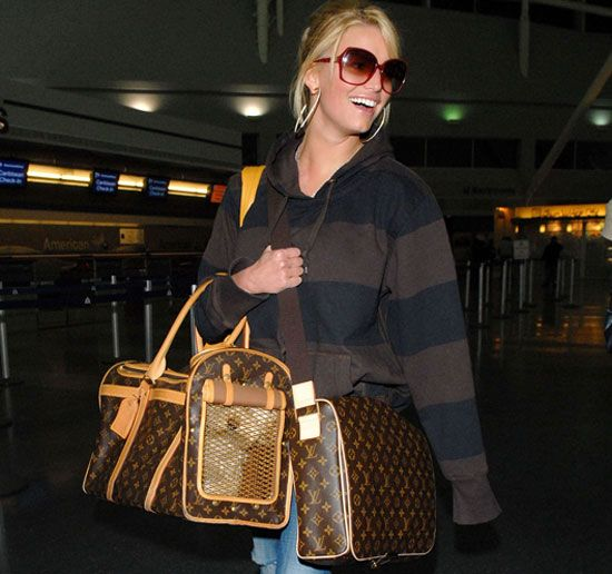 91b40b816cb6 Louis Vuitton Spotters  What costs more  Jessica s LV Messenger or LV Dog  Carrier