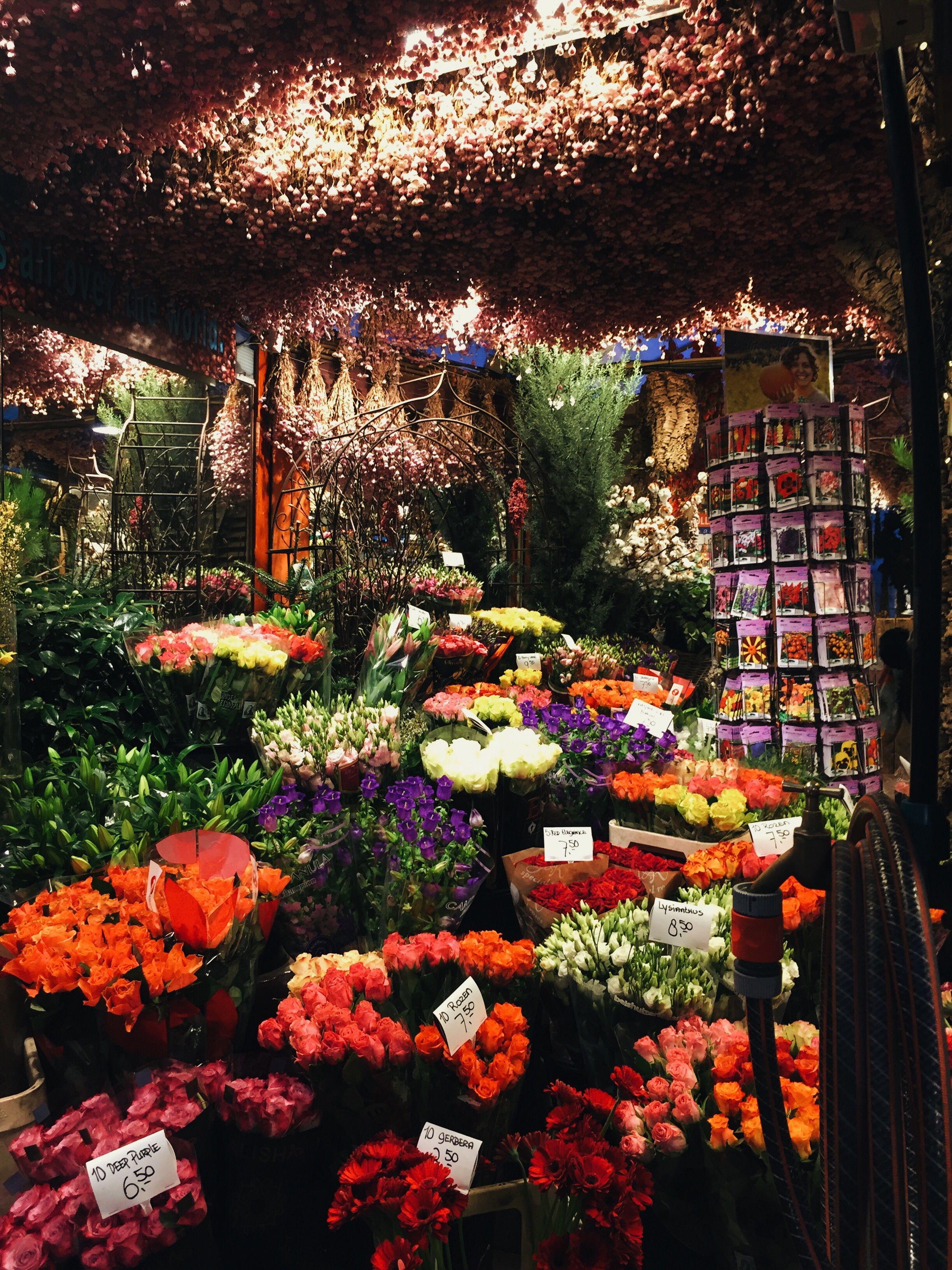 Travel Flowers Amsterdam Netherland Mit Bildern