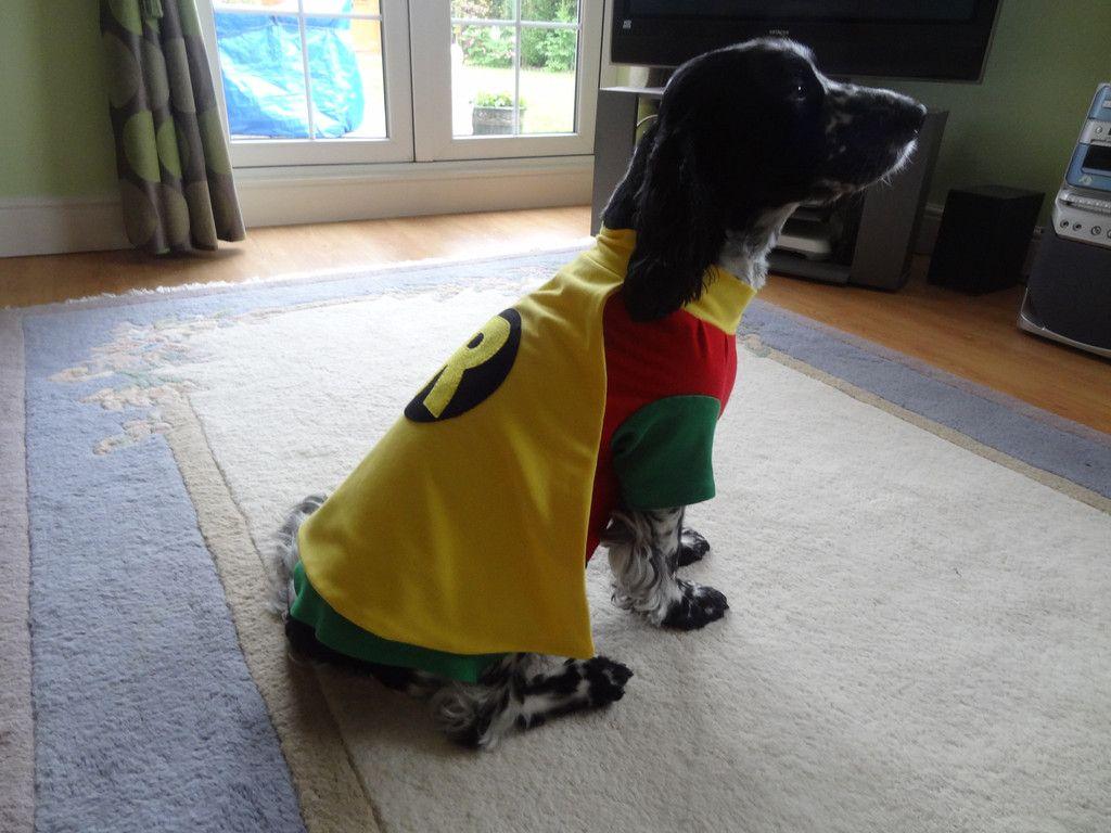 Fancy Dress Dog Costume Coat Robin Batman Dog Fancy Dress Dog