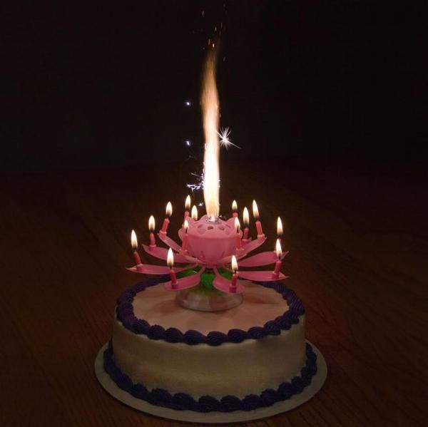 Blooming Musical Candle Birthday Candles Candles Pink Candles