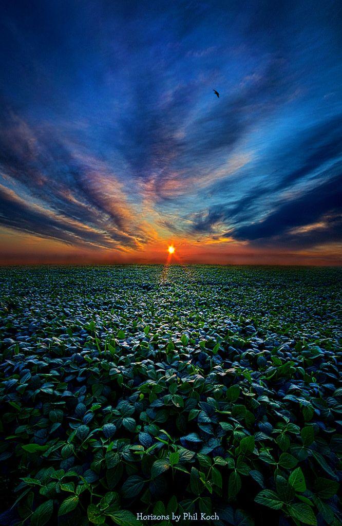 """https://flic.kr/p/mGQ1PJ   Farmer's Delight      """"Farmer's Delight""""  Horizons by Phil Koch. Lives in Milwaukee, Wisconsin, USA. phil-koch.artistwebsites.com www.facebook.com/WisconsinHorizons"""