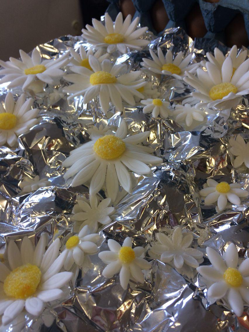 Handmade textured Daisy's
