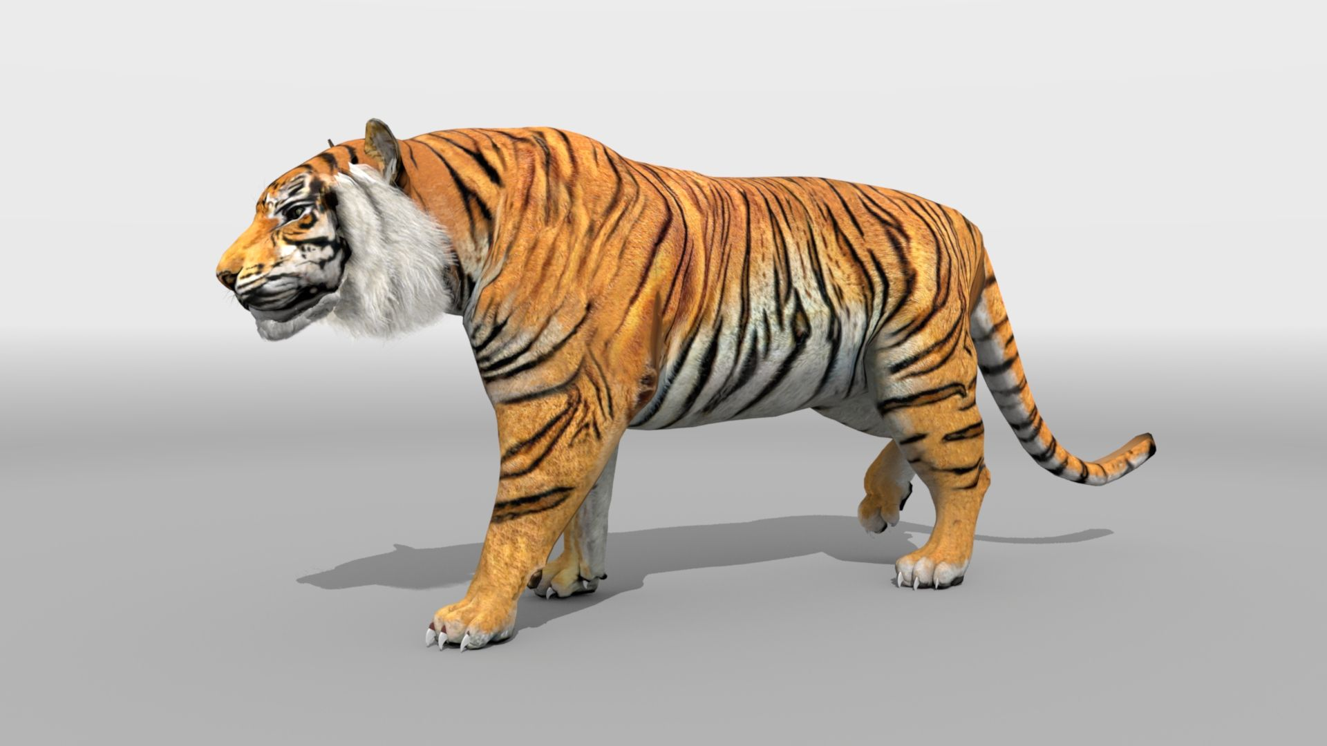 Check Out New Video Of 3d Animated Tiger By Oceans Technologies You Can See The Complete Variations Animation 3d Animation Artificial Intelligence Development