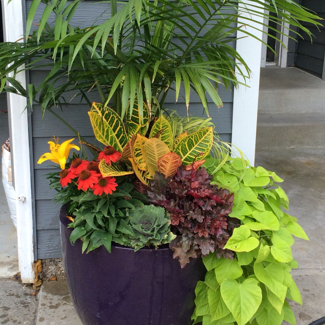 Late Summer Early Fall Planter Fall Planters Fall Landscaping