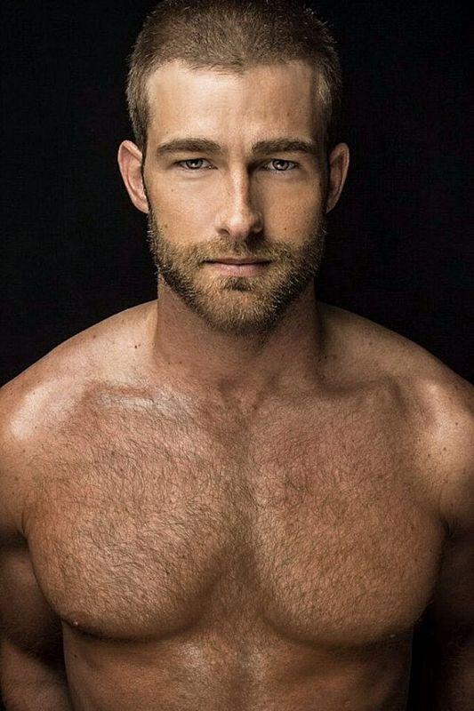 Free mature hairy men pics
