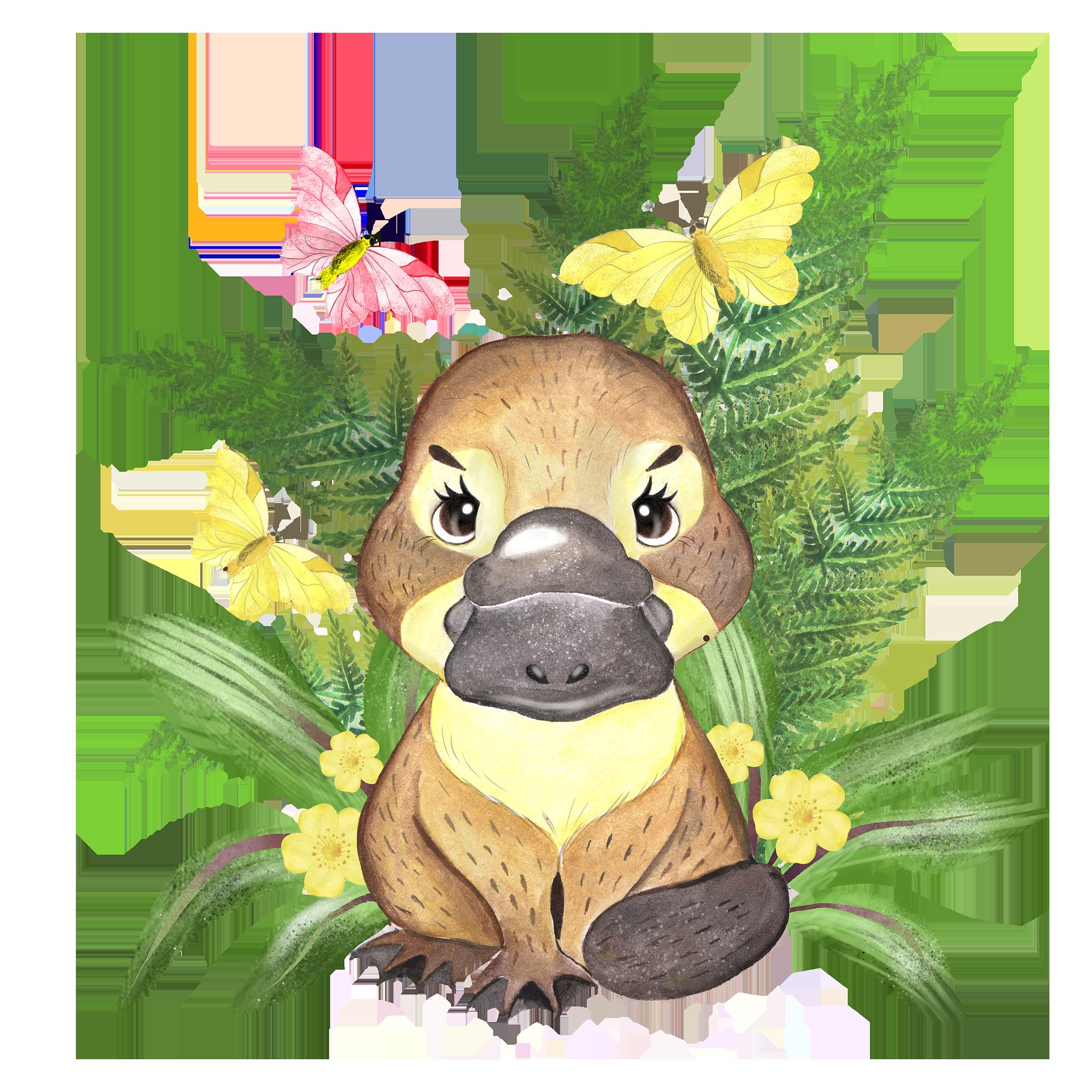 Australian Animals Clipart Koala Platypus Quokka Flowers Etsy In 2021 Baby Animal Drawings Australian Animals Cute Australian Animals