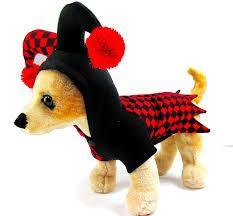 Resultado de imagen de disfraces divertidos de perros