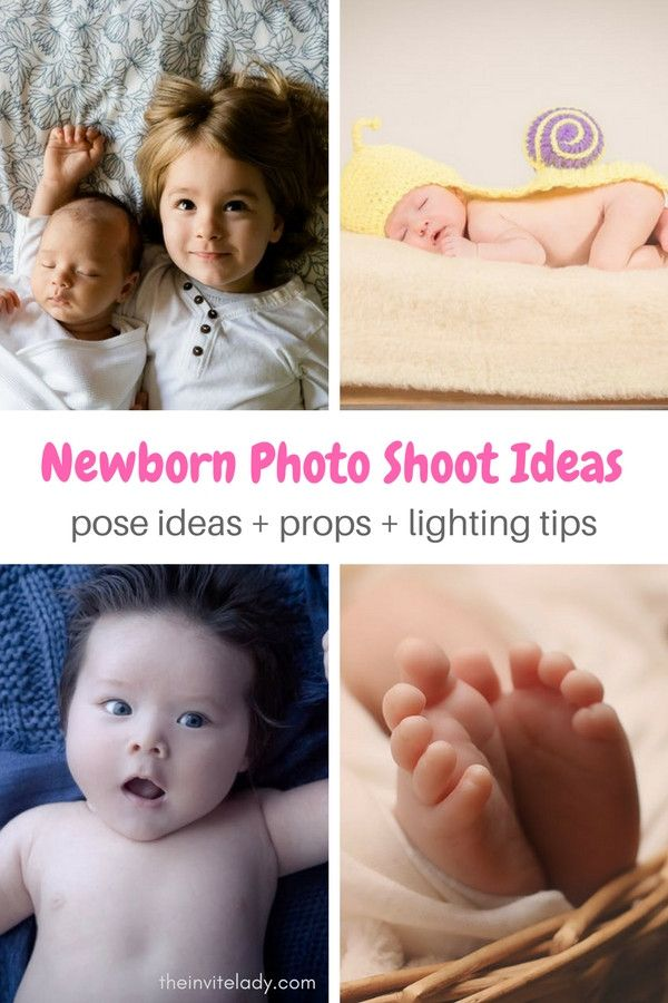 Easy diy newborn baby photography ideas to set up your own newborn photo shoot from theinvitelady com