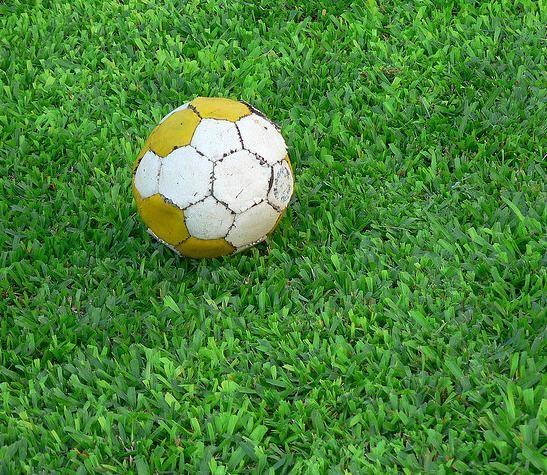 Campo De Futebol Oficial, De Futebol Society E Quadras De