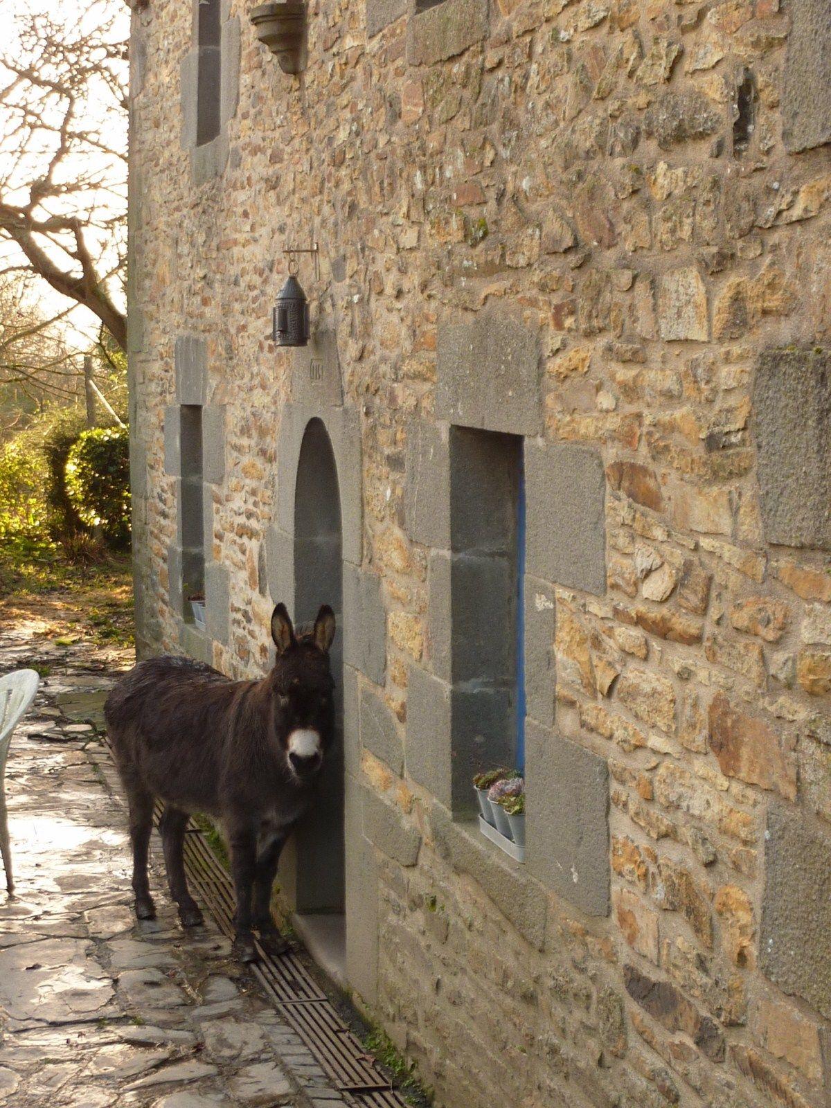Les clichés bretons sur le blog du Domaine de Moulin Mer chambres