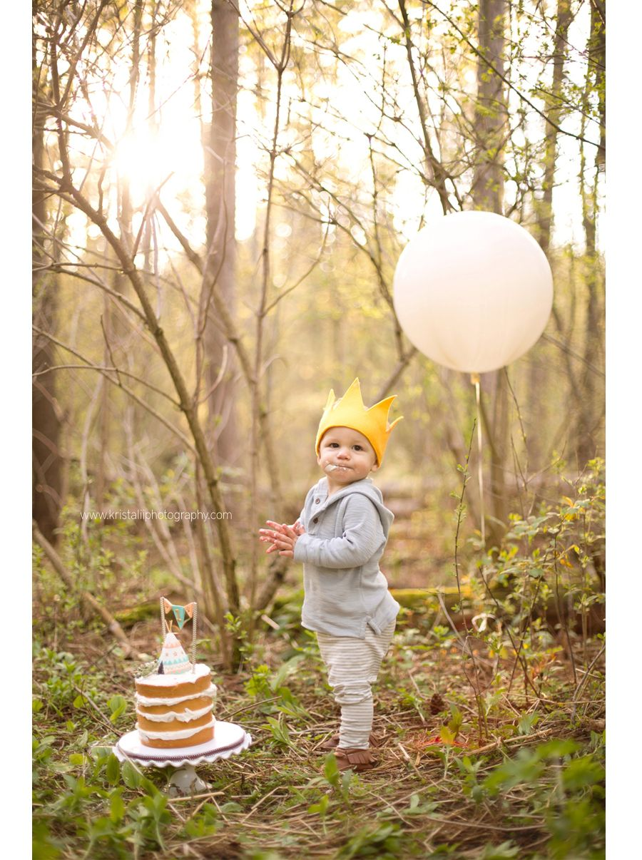 Forest wild thing baby smash cake torontonewbornbaby