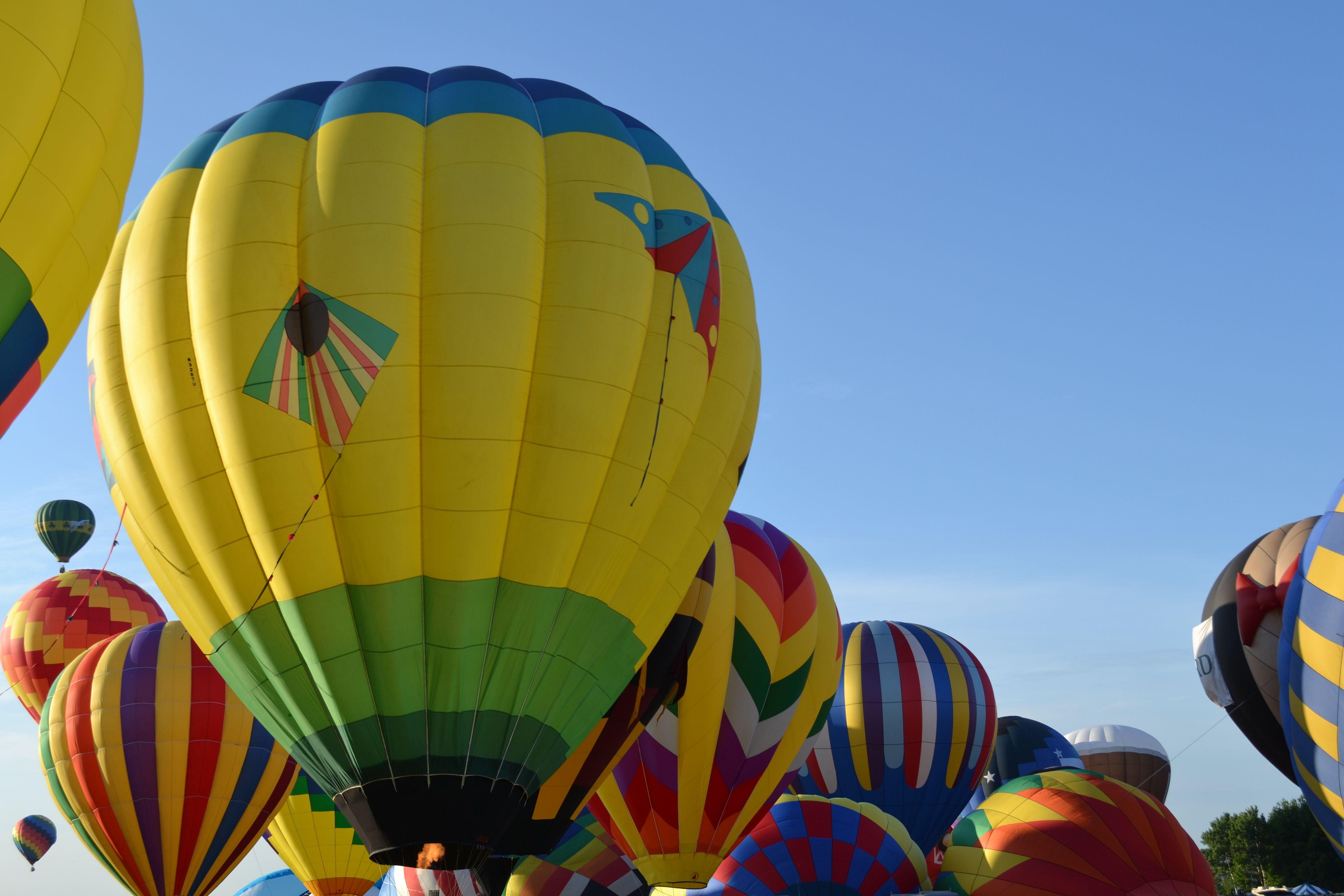 NJ Quickcheck Balloon Festival! July 2628. Whitehouse