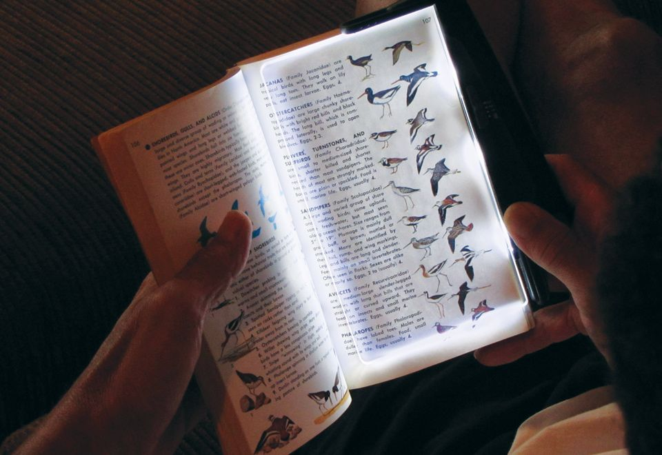 Led Book Light With Rechargeable Battery Sharper Image Book