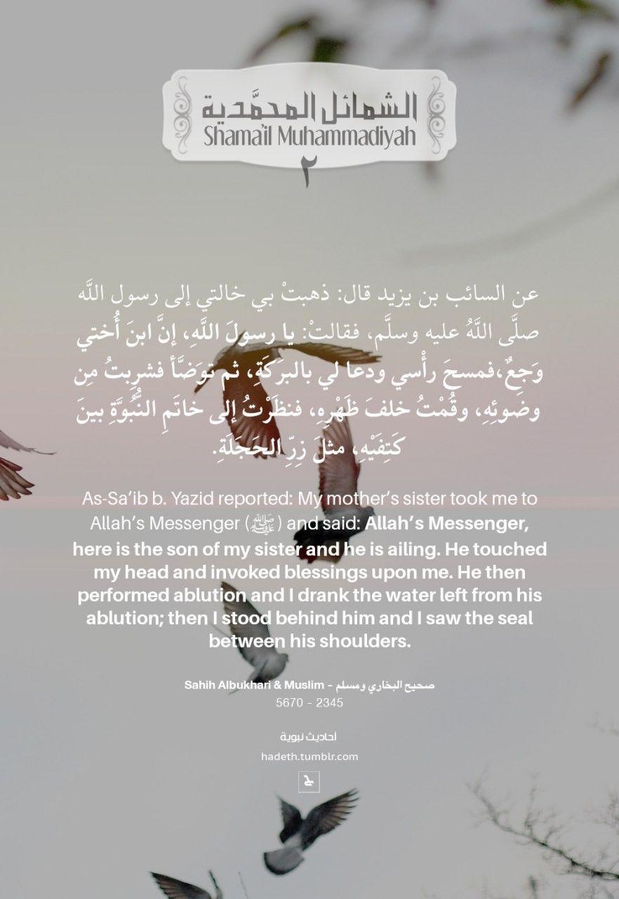 ما جاء في خاتم النبوة 2 Seal Of Nubuwwah Prophethood Of Allah S Messenger عن السائب بن يزيد قال ذهبت ب Hadith Of The Day Peace Be Upon Him Islamic Images