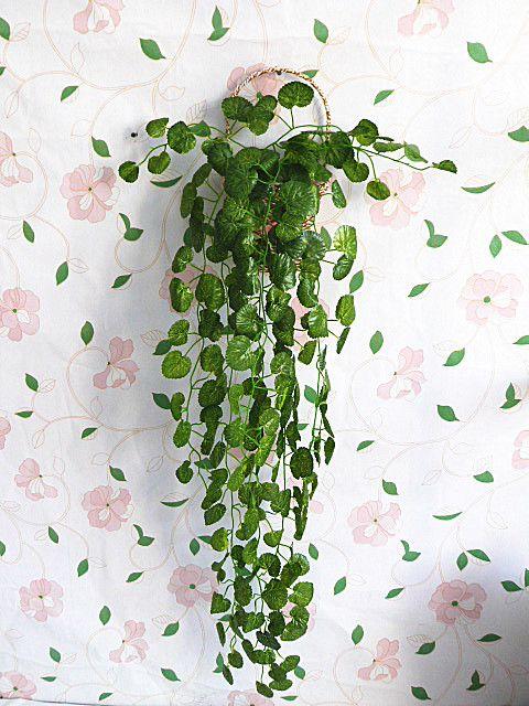 deco plantes interieur - Recherche Google