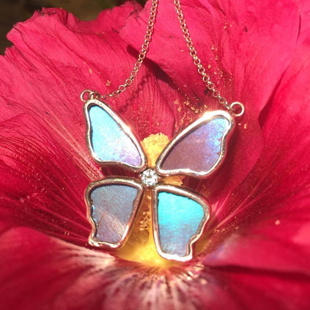 فراشة صغيرة مجوهرات من أجنحة الفراشات الحقيقية Small Supper Cute Butterfly Realbutterflywing Terraeclat Jew Jewelry Art Unique Gemstones Real Butterfly Wings